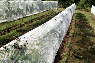 Fruit Zone Anti-insects Netting System